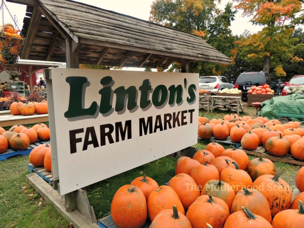 The sign for the Linton's Farm Market surrounded by large pumpkins
